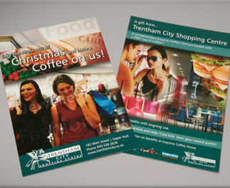 Single side Brochures