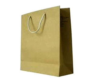 Paper Carry Bag - Paper Bags - CB-ZRHP-5024 - China Printing